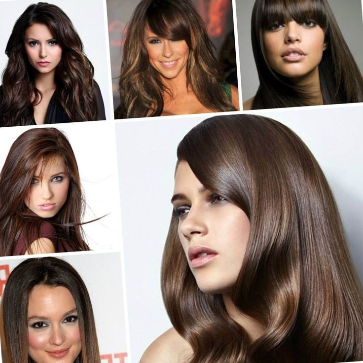 A Fashion And Trend Women's Hairstyles