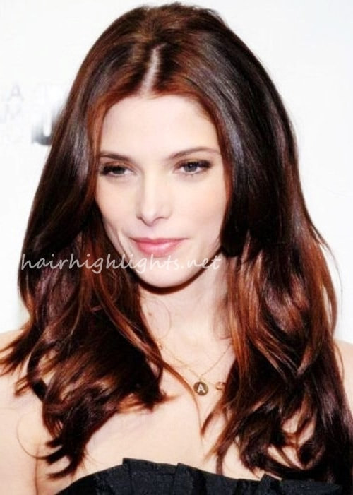 hair colour for dark hair
